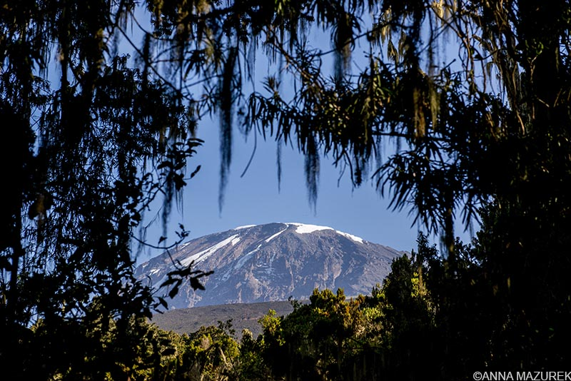 Kilimanjaro 101: Cost, Routes & Packing List