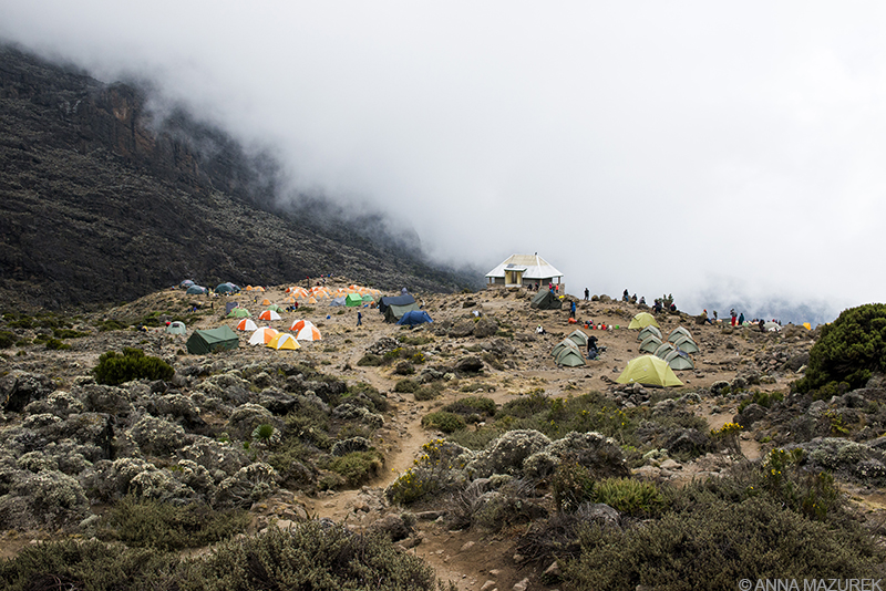 What It's Like to Climb Kilimanjaro