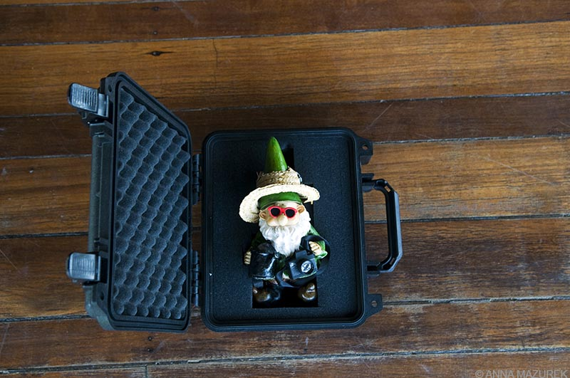 Traveling Gnome